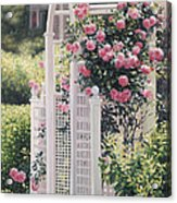 The Rose Arbor The Wauwinet Acrylic Print