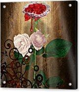 The Rose Of Sharon Acrylic Print