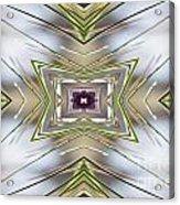 The Sacred Pine Mandala Yantra Acrylic Print