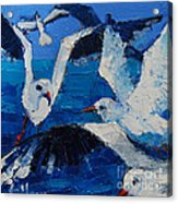 The Seagulls Acrylic Print