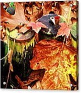 The Secret Of Fall Acrylic Print