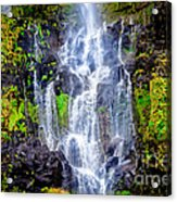 The Seduction Of Water Acrylic Print
