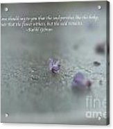 The Seed Acrylic Print by Barbara Shallue