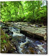The Shankhill River Shortly Acrylic Print
