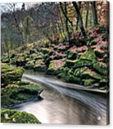 The Shimmering Strid Acrylic Print