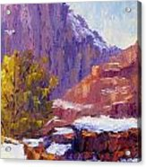 The Side Of The Road At Zion Acrylic Print