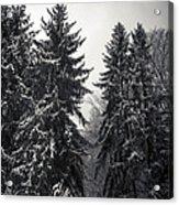 The Silent Season Acrylic Print
