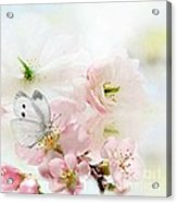 The Silent World Of A Butterfly Acrylic Print