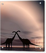 The Silhouetted Forms Of A Pair Acrylic Print