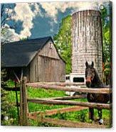 The Silo Horse Acrylic Print