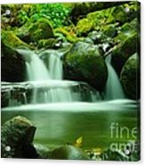 The Small Water Acrylic Print