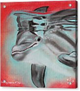 The Smiling Dolphins Of Taiji Acrylic Print