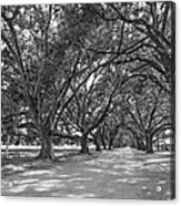 The Southern Way Bw Acrylic Print