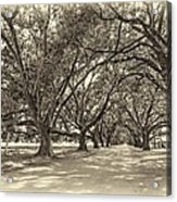 The Southern Way Sepia Acrylic Print