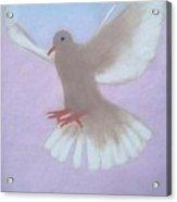 The Spirit Descendedlike A Dove. Acrylic Print