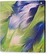 The Spirit Of A Hummingbird Acrylic Print