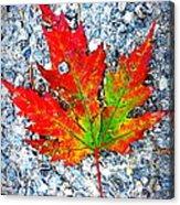 The Spirit Of Autumn Acrylic Print