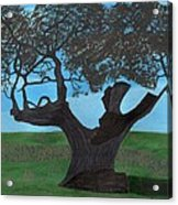 The Split Tree - Bradgate Park Acrylic Print by Bav Patel
