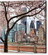 The Spring Skyline Acrylic Print