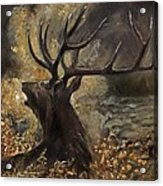 the Stag sitting in the grass oil painting Acrylic Print