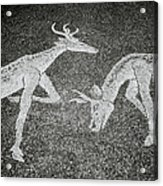 The Stags Acrylic Print