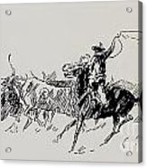 The Stampede Acrylic Print