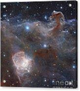The Star-forming Region Ngc 2024 Acrylic Print