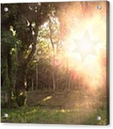 The Star Of David Appeared Acrylic Print