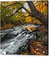 The Still River Square Acrylic Print by Bill Wakeley
