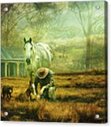The Stock Horse Acrylic Print by Trudi Simmonds