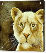 The Stone Lion... Acrylic Print by Will Bullas