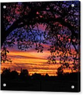 The Sun Sets For Mike Acrylic Print