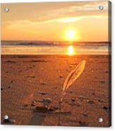 The Sunrise Story Acrylic Print