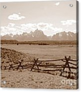 The Tetons In Sepia Acrylic Print
