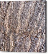 The Texture Of Wood Acrylic Print