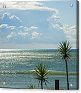 The Three Palms Acrylic Print