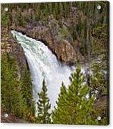 The Thundering Lower Yellowstone Falls Acrylic Print