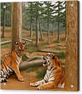 The Tigers Acrylic Print