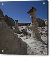 The Toadstools Acrylic Print by Timothy Johnson