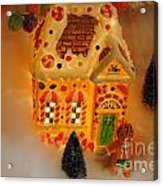 The Toy Store Acrylic Print by Skip Willits