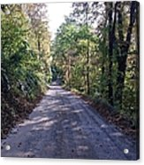 The Traveler's Road Acrylic Print
