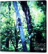 The Tree Spirits Acrylic Print