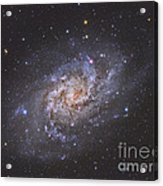 The Triangulum Galaxy Acrylic Print by Reinhold Wittich