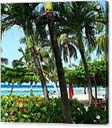 The Tropics Acrylic Print