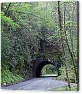 The Tunnel Acrylic Print by Roger Potts