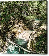 The Turquoise Waters Of The Forest River No2 Acrylic Print