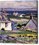 The Two Crofts Acrylic Print by Francis Campbell Boileau Cadell