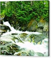 The Upper Paradise River Acrylic Print