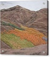 The Valley Of Color Acrylic Print