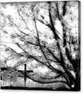 The Veil Was Torn Acrylic Print
